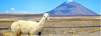 hotel deals south america
