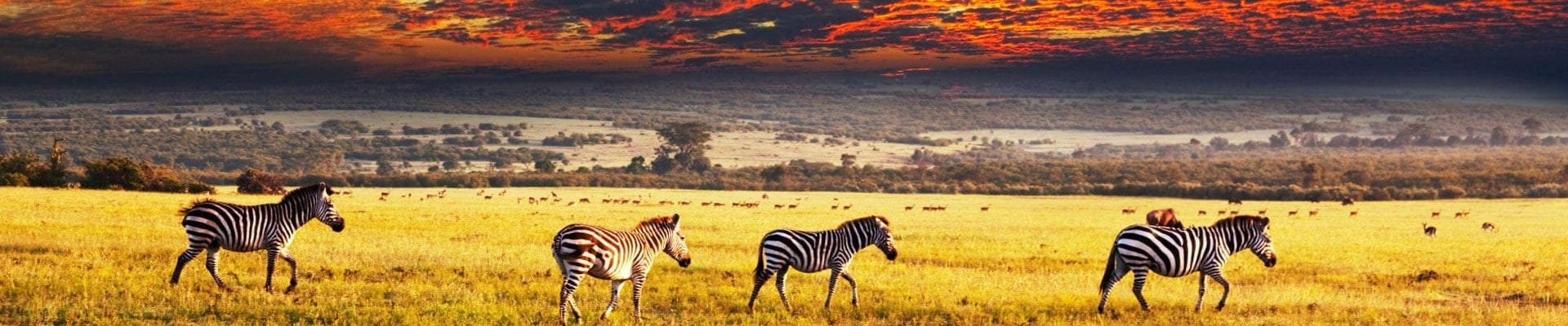 sunset-africa