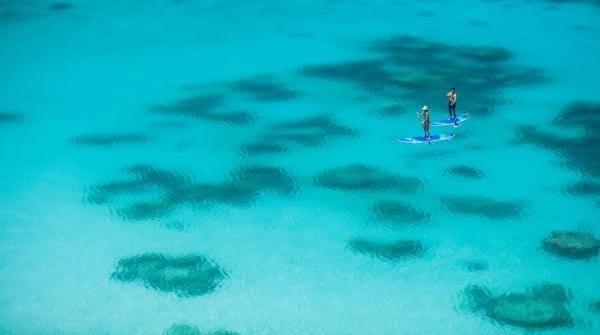 Lizard Island paddleboarding