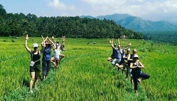 wellness and yoga in bali