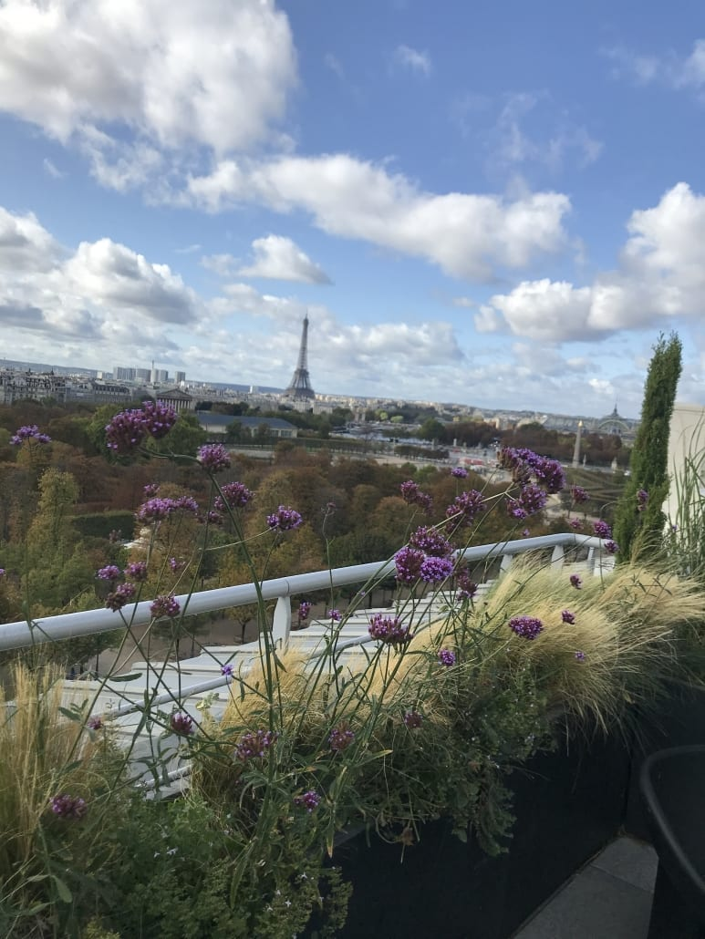View from the Belle Etoile Penthouse Suite with Terrace