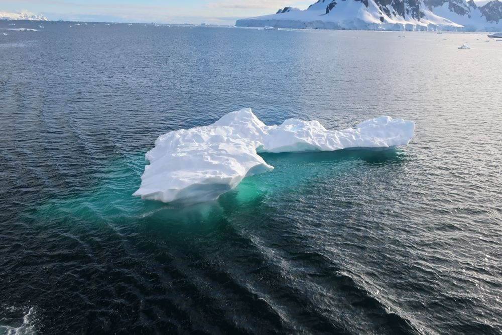 Silversea Antarctica