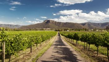 Holidays in Australia - Hunter Valley