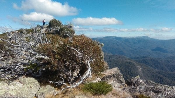 Hedonistic Hiking Victorian Alps